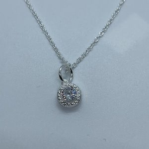 Women's Silver Plated Fashion Charm and Necklace